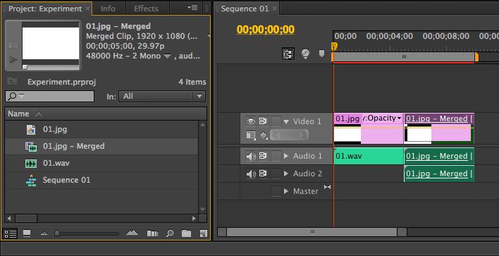 Adobe Premiere Pro CS6: Merged Clips within Final Cut Pro
